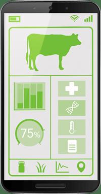 Livestock Management