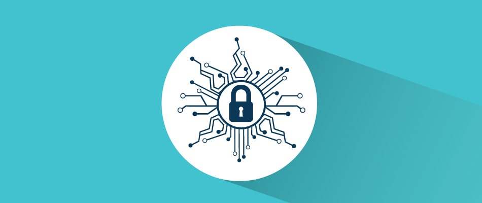 secure network icon