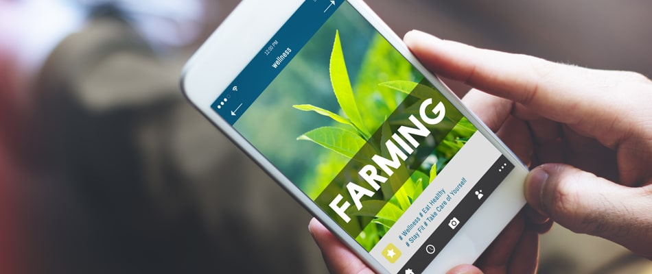 Grasping the Universe of Digital Farming Solutions