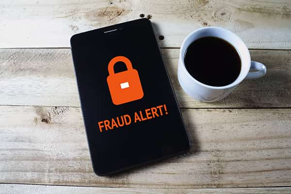 Security and Fraud Alerts
