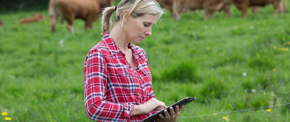 Livestock Management Software