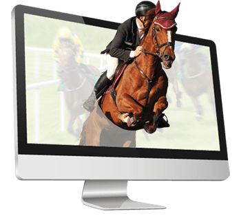 the horses from horse betting software databases racing horse in screen