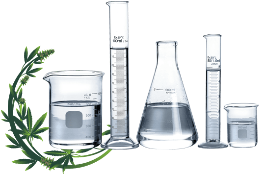 BigCommerce Support for Better Lab Equipment