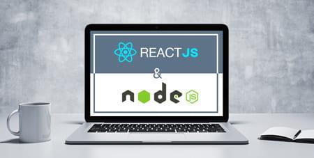 NODE.JS and REACTJS