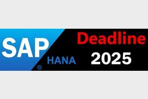 SAP HANA 2025 Migration